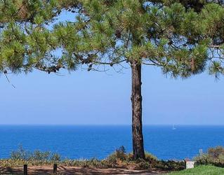 Bilyana Golf - Vale Do Lobo Golf Resort